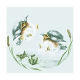 Splish Splash Giclee Print by Peggy Harris