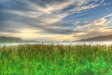 Cattails and Sky Photographic Print by Robert Goldwitz