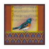 Indigo Bunting Giclee Print by Rachel Paxton