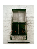 Window with Flower Box in Front of It Giclee Print by Nora Hernandez