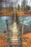 Footbridge Vertical Photographic Print by Robert Goldwitz