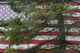 Pine Flag Barn Photographic Print by Robert Goldwitz
