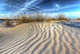 Dune Lines Photographic Print by Robert Goldwitz