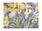 Daffodils, Van Vleck Giclee Print by Sharon Pitts