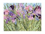 Iris Garden X Giclee Print by Sharon Pitts