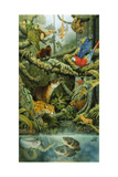 Rainforest Giclée-tryk af Tim Knepp