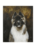 American Akita Giclee Print by  Solveiga