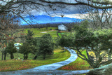 Driveway View Photographic Print by Robert Goldwitz