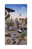 Desert Scene with Falcon and Cactus, a Fox and Other Desert Animals Giclee Print by Tim Knepp