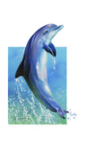 Jump Dolphin Giclée-tryk af Tim Knepp