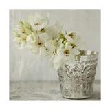 Silver Vase Giclee Print by  Symposium Design