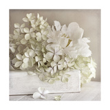 White Flower Book Giclee Print by  Symposium Design