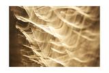 Poesia En Monocromo 4 Giclee Print by  Stessi