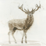 Stag v.2 Prints by James Wiens