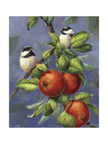 Chickadees and Apples Giclee Print by Wanda Mumm