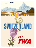 Switzerland- Fly TWA (Trans World Airlines) - Crocus Flowers Swiss Alps Posters by David Klein
