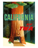 California Redwoods - TWA (Trans World Airlines) Giclee Print by David Klein