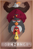 Angry Birds- Born To Be Angry Poster