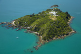 Matiu, Somes Island, Wellington Harbour, Wellington, New Zealand Photographic Print by David Wall