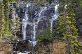 Canada, Alberta, Jasper National Park, Tangle Falls Photographic Print by Jamie & Judy Wild