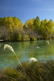 New Zealand, South Island, Mackenzie Country, Ohau River in Autumn Photographic Print by David Wall