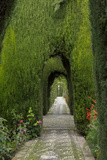 Granada, Spain, Alhambra, Famous Hedges of Gardens of the Generalife Photographic Print by Bill Bachmann