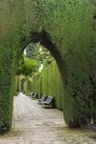 Granada, Spain, Alhambra, Famous Hedges of Gardens of the Generalife Fotografie-Druck von Bill Bachmann