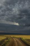 Kenya, Maasai Mara, Mara River Basin, Storm Cloud at Sunset and Road Photographic Print by Alison Jones