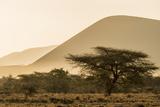 Kenya, Chyulu Hills, Old Donyo Wuas Lodge, Mbirikani, Sunrise Photographic Print by Alison Jones