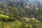 Village in the Mountain, Bromo Tengger Semeru NP, East Java, Indonesia Photographic Print by Keren Su