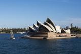 Australia, Sydney. Harbor Area, Landmark Sydney Opera House Fotografisk tryk af Cindy Miller Hopkins