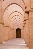 Morocco, Marrakech, Tinmal. the Great Mosque of Tinmal Photographic Print by Emily Wilson