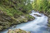 Slovenia, Near Bled, Vintgar Gorge Photographic Print by Rob Tilley