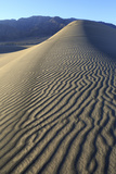 Patterns Along the Sand Dunes, Mesquite Dunes, Death Valley NP Photographic Print by James White
