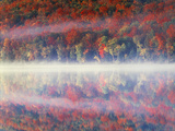 New York, Adirondack Mts, Sugar Maples and Fog at Heart Lake in Autumn Photographic Print by Christopher Talbot Frank