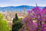 View of City Center of Florence, Firenze, UNESCO, Tuscany, Italy Photographic Print by Nico Tondini