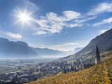 Vineyards and the Valley of the River Etsch. South Tyrol, Italy Photographic Print by Martin Zwick