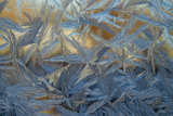 USA, Colorado, Denver. Frost on a Window Photographic Print by Cathy & Gordon Illg