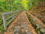 Michigan, Upper Peninsula. Trail Leading to Munising Falls in Autumn Photographic Print by Julie Eggers
