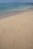 Las Bachas Beach, Santa Cruz Island, Galapagos Islands, Ecuador Photographic Print by Pete Oxford