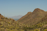 USA, Arizona, Saguaro National Park. Valley in Desert Landscape Photographic Print by Cathy & Gordon Illg