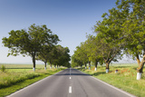 Romania, Danube River Delta, Tulcea, Country Road Photographic Print by Walter Bibikow