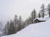 Valley Lesachtal During Winter, Mountain Huts in Deep Snow. Austria Stampa fotografica di Martin Zwick