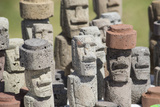 Chile, Easter Island. Carved Volcanic Stone Moi Figures Photographic Print by Cindy Miller Hopkins