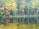 Michigan, Upper Peninsula. Fall Colors on Thornton Lake, Alger Co Photographic Print by Julie Eggers