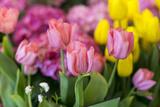 New York City, NY, USA. Floral Displays for Spring Fotografisk tryk af Julien McRoberts