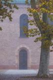 Germany, Rheinland-Pfalz, Speyer, Domgarten, Cathedral Park, Fog Photographic Print by Walter Bibikow