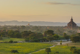 Myanmar. Bagan. Horse Carts and Cattle Walk the Roads at Sunset Photo by Inger Hogstrom