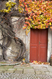 Czech Republic, Liberec, Skala. the Skala Castle Photographic Print by Emily Wilson