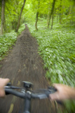 View from Bicycle Along Wooded Track, Uley, Gloucestershire, England Fotodruck von Peter Adams